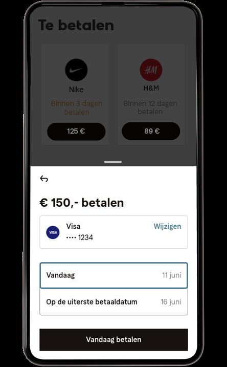 De betaling mobiel scherm