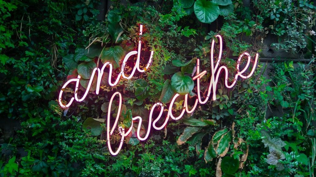 and breath in neon pink lighting