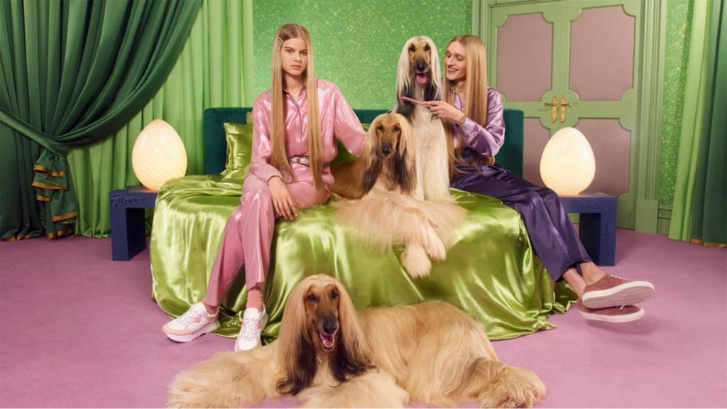 Two girls sitting on a bed with three afghan dogs.
