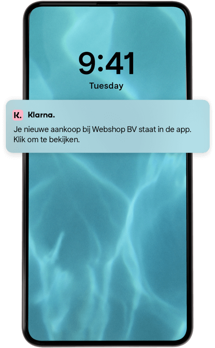 Pay later with klarna mobile screen